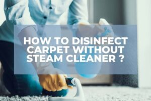How To Disinfect Carpet Without Steam Cleaner?