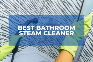 Best Bathroom Steam Cleaner